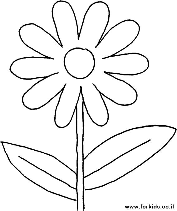 פרח עם עלה לצביעה