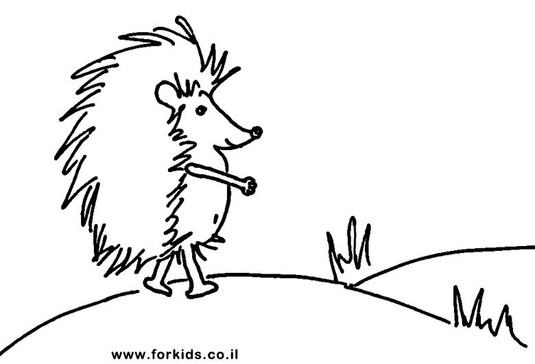 ספרים לצביעה: בעלי חיים לצביעה