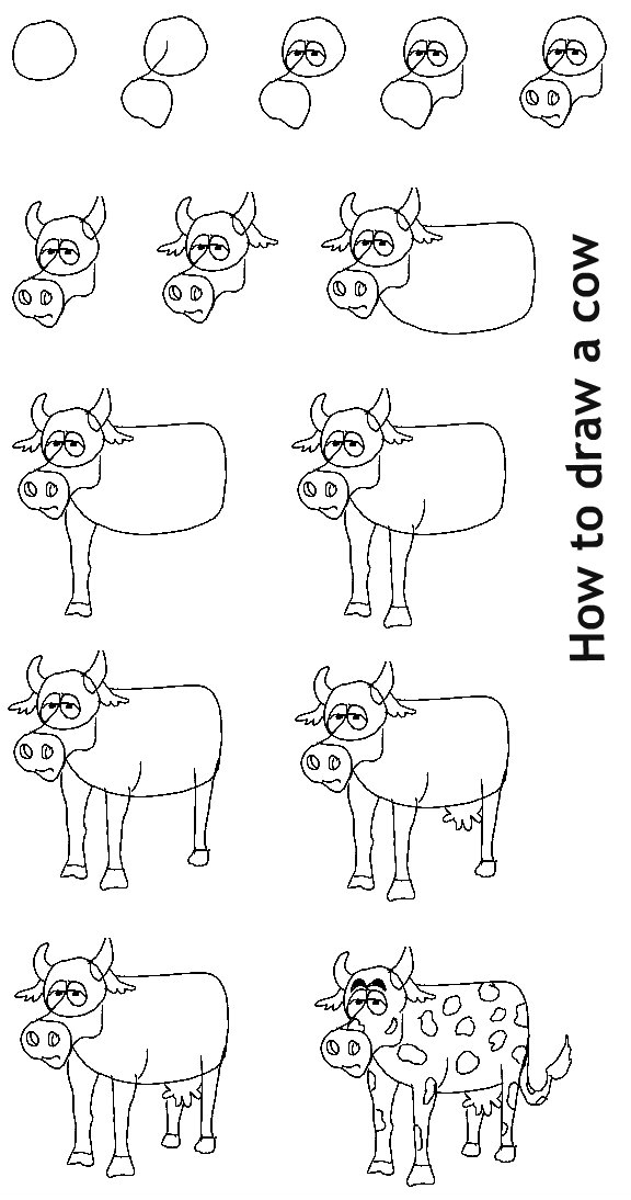 איך לצייר פרה