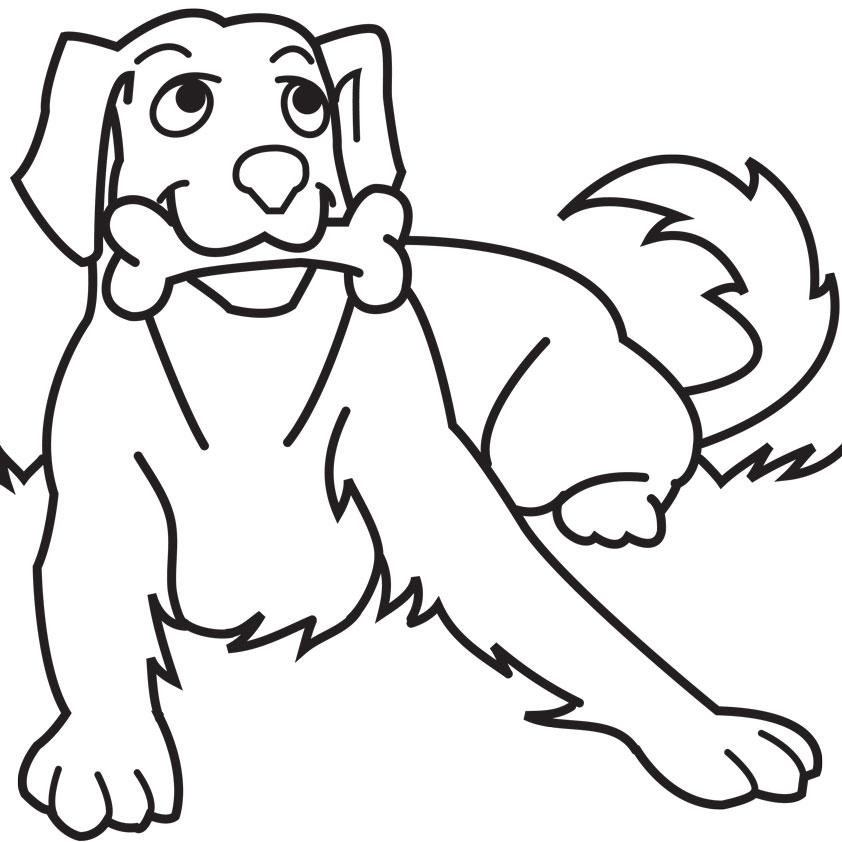 כלב ועצם לצביעה