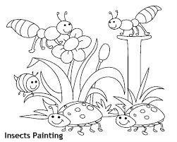 חרקים לצביעה