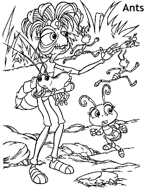 נמלים-דף צביעה