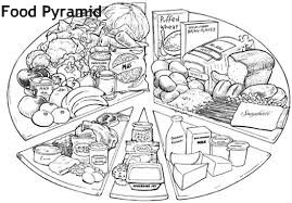פירמידת המזון דף- צביעה