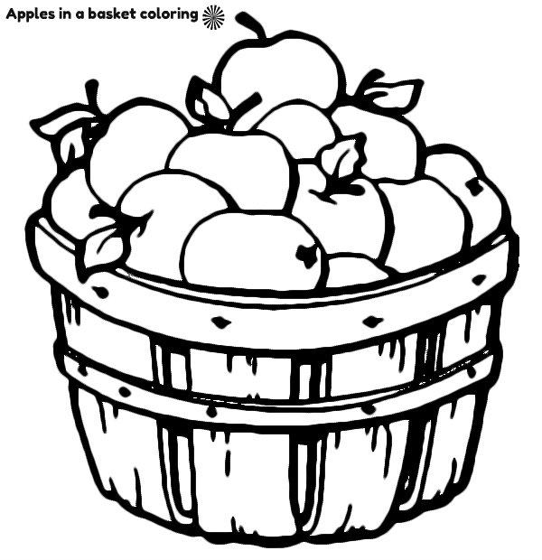 תפוחים בסלסלה לצביעה